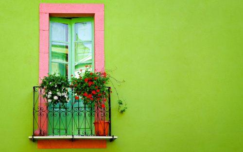دیوار و پنجره