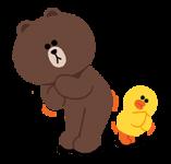 brown & duck (8)