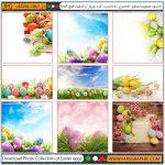 مجموعه تصاویر تخم مرغ رنگی