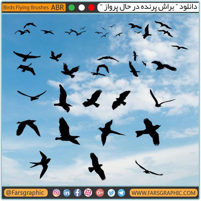 براش پرنده