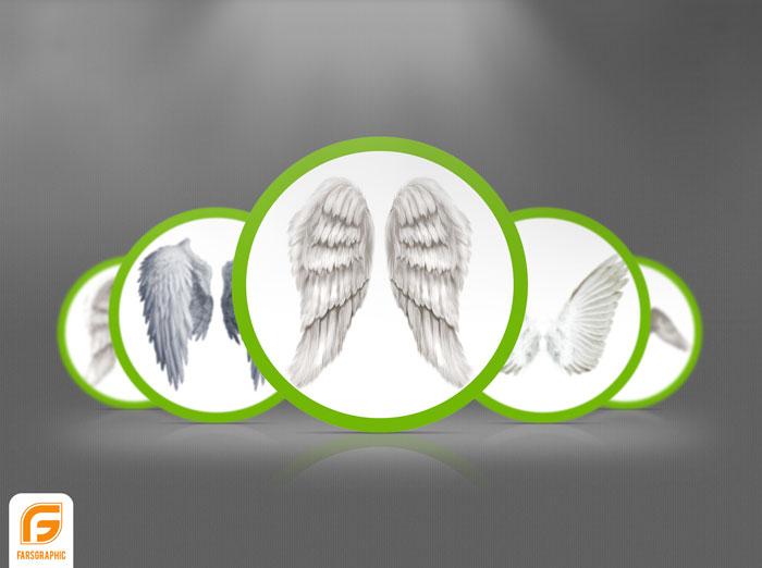 دانلود مجموعه تصاویر بال پرنده با پسوند PNG