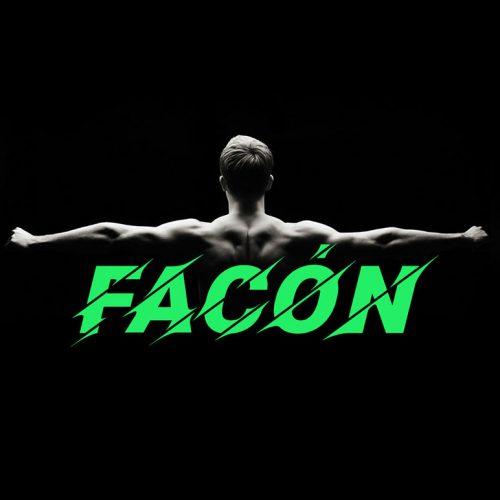 فونت انگلیسی FACON